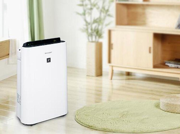 干燥空调房易感冒 加湿空气净化器来解决