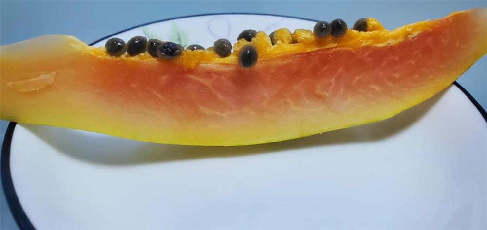 用木瓜和鸡胸肉测试冰箱保鲜 结果惊人!