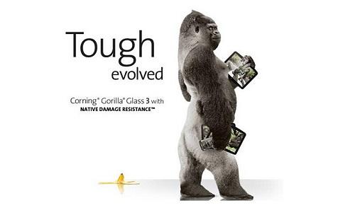 实拍动物园大猩猩撞碎玻璃墙 越狱出逃